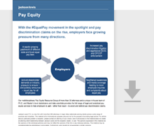 Download Pay Equity Brochure